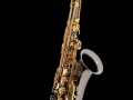 tenorsaxofoon_04b_ascepl